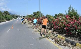 Girne Batı Çevre yolunda temizlik çalışması yapılıyor