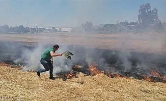 Alayköy ve Düzova'da arazi yangını!
