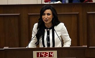 Özdenefe: Tatar demokrasiyi ayaklar altına alıyor