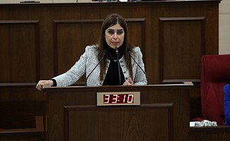 Dilekçe ve Ombudsman komitesi başkanı Gürçağ oldu