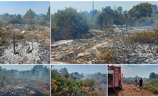 Bafra'da yangın...