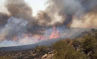 Arıdamı köyünün batı kısmında yangın çıktı…