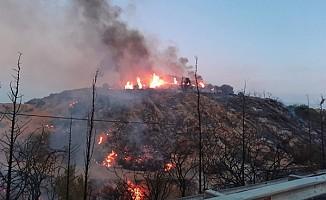 Yangınlar korkutuyor...