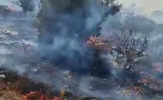 İskele-Ardahan arasında çöplük alanda yangın ...